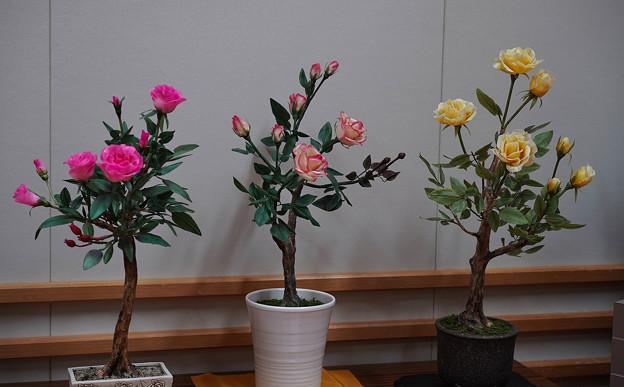 花遊び展4-5
