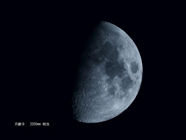 写真: 月_2