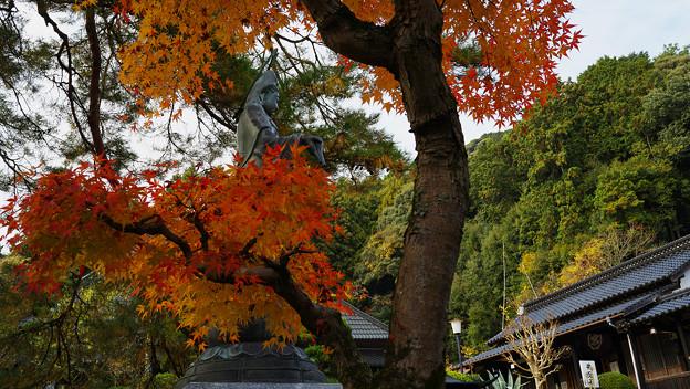 秋の彩り6-2