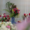 Photos: 春バラ展1-1
