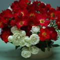 春のバラ展7-6