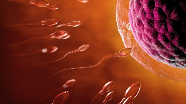 IVF Centre in delhi