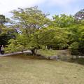 Photos: 180412C04700