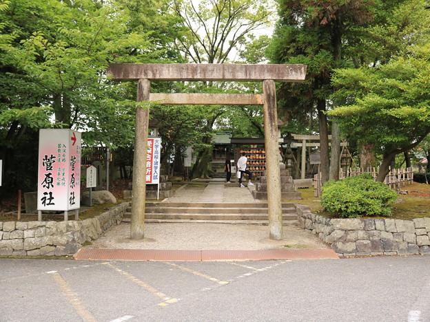 津島神社16