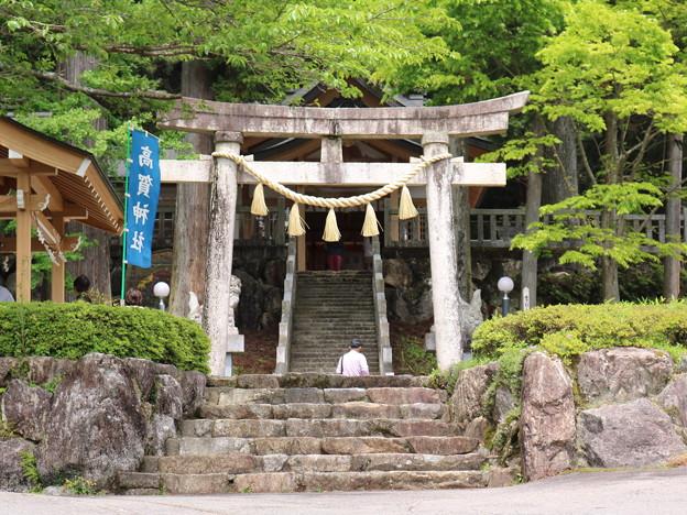 高賀神社 (10)