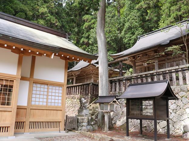 高賀神社 (18)