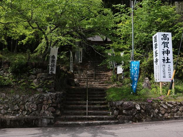 高賀神社 (20)