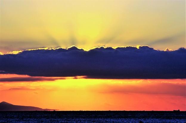 写真: 大島遠望