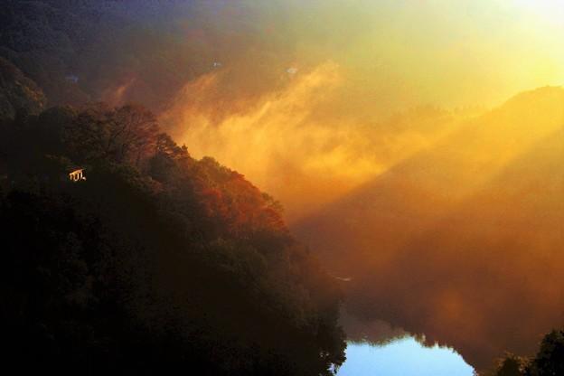 写真: 湖畔の朝