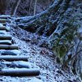 Photos: 階段はつらい