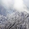 Photos: 凍る山