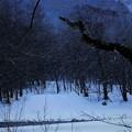 Photos: 上高地冬景 4