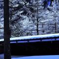 上高地冬景 5