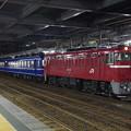 Photos: 臨時夜行急行津軽83号青森行き