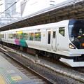IMGP0287