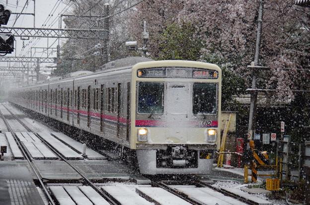 Photos: 顔に目一杯雪を付けてやってきた7000系