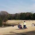 Photos: の~んびり