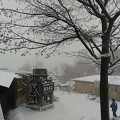 Photos: 雪の露天風呂
