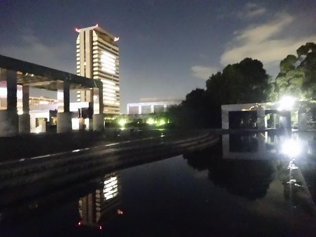 Photos: 夜景・「きらめきの池」  2/2