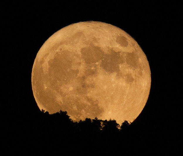 Photos: 月が出た