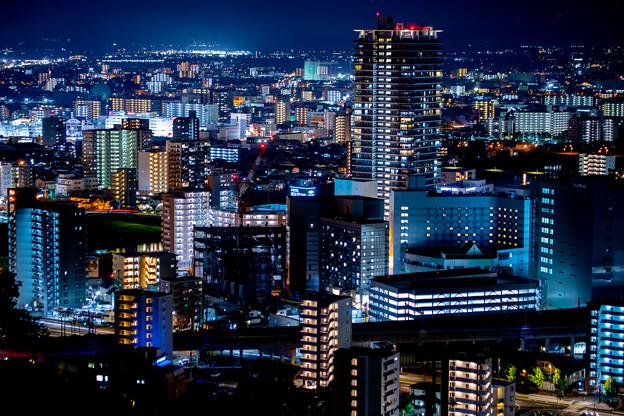 熊本市花岡山にて