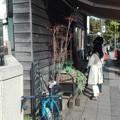 写真: サスケストアー鎌倉