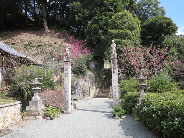 今泉不動の門