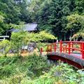 雛鶴神社(無常野)