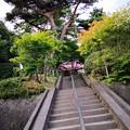 Photos: 日輪寺 階段