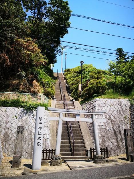 Photos: 琴平神社 本殿への階段