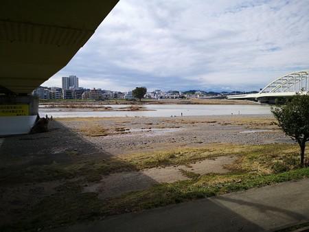 登戸方面多摩川まだ茶色