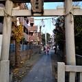 Photos: 鹿島神社