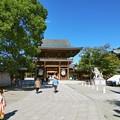 Photos: 七五三@寒川神社