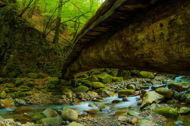 Photos: 橋の裏側