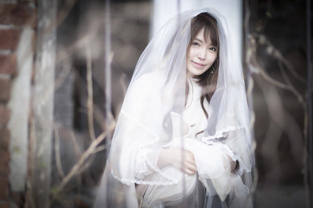 写真: veil