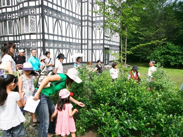 写真: 128 自然観察散歩ツアーイメージ by ホテルグリーンプラザ軽井沢