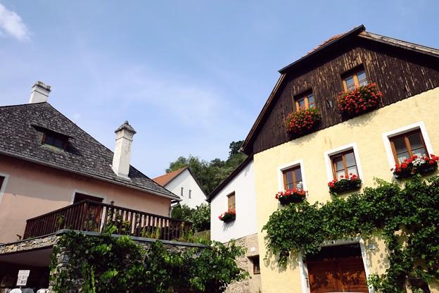 窓の花-Dürnstein, Austria