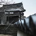 Photos: 曇天の中-大分県臼杵市:臼杵城址