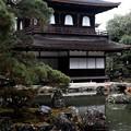 静かな参拝-京都市左京区:慈照寺(銀閣寺)