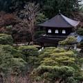 京都への思い-京都市左京区:慈照寺(銀閣寺)