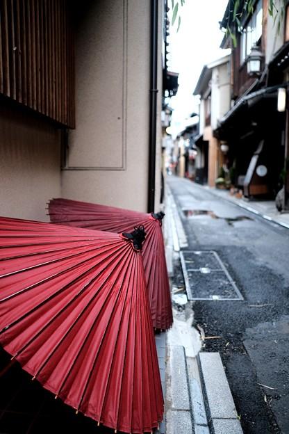 風情たっぷり-京都市中京区:先斗町