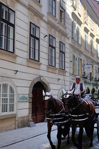 魅力的な小径-Wien, Austria