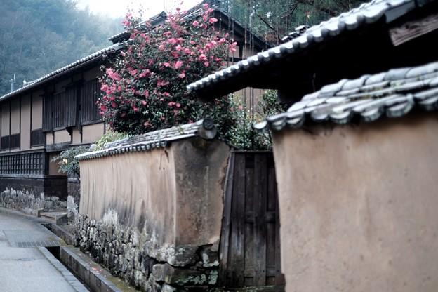 Photos: 豊後の小京都-大分県竹田市