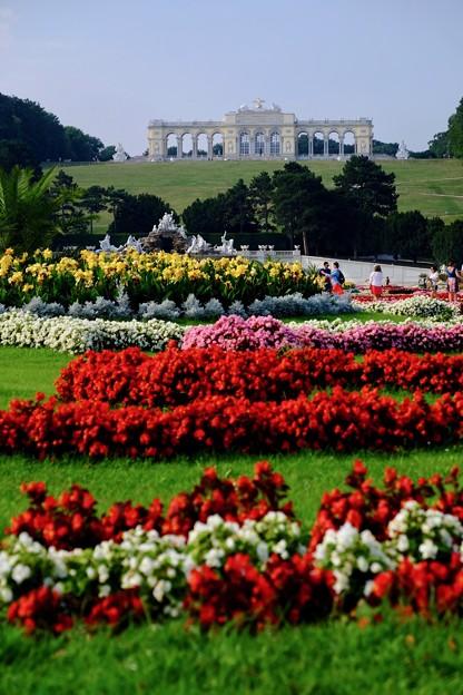 広大な庭園へ-Wien, Austria