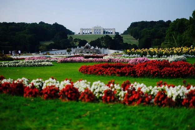 庭園は無料-Wien, Austria