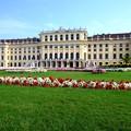 マリア・テレジアの美的感覚-Wien, Austria