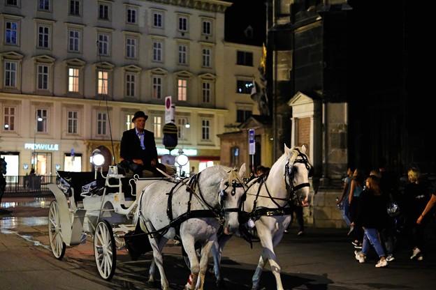 農耕民族と狩猟民族-Wien, Austria