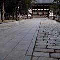 Photos: ここにも人がいない-奈良県奈良市:東大寺大仏殿