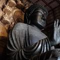 堂々たる姿-奈良県奈良市:東大寺大仏殿