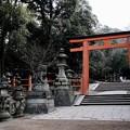 Photos: 鳥居をくぐって-奈良県奈良市:春日大社